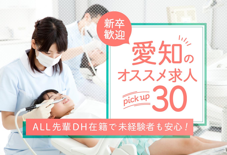 愛知県の新卒DH求人
